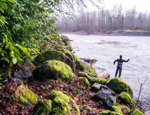 6 Fun Adventures to Try Near Willamette Falls