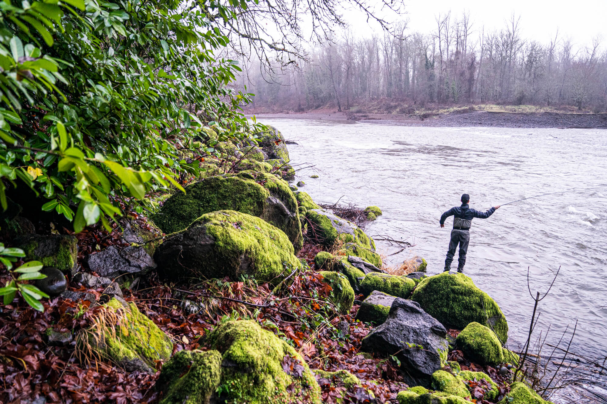 6 Fun Adventures to Try Near Willamette Falls